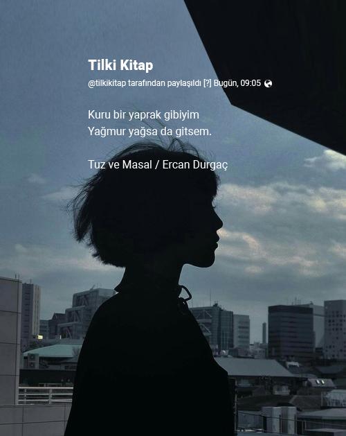 Ercan Durgaç, Ercan Durgaç Şiirleri, Kitap, Tilki Kitap, Alıntı, Tuz ve Masal