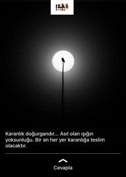 karanlık, ışık, anlamlı sözler, çaresizlik, aşk acısı, cümleler, arama, tilki kitap