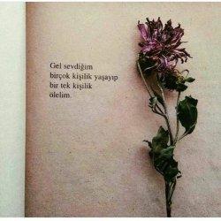acı,aşk,