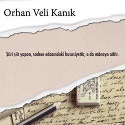 şiir, hususiyet, sözler, kitap, yayınevi